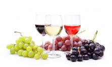 Intro to Winemaking Classes