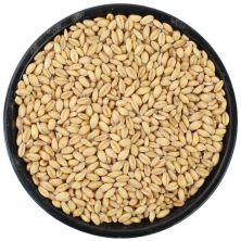 Unmalted Raw Wheat
