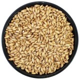 Briess 2 Row Malt (Brewers Malt)