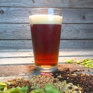 McGregor's 70 Shilling Scottish Ale - Extract Beer Recipe Kit