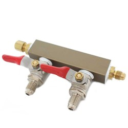2 way co2 manifold with check valves - mfl