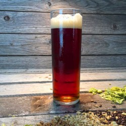 Austin Altbier - Extract Beer Recipe Kit