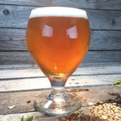 BBQ Blonde - Extract Beer Recipe Kit