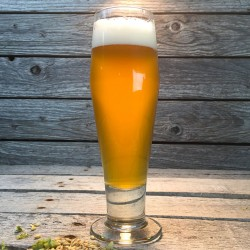 Brazos Blonde - Extract Beer Recipe Kit