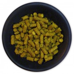 German Hersbrucker Hop Pellets - 1 lb.