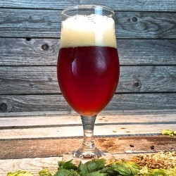 Double Down Dubbel - Extract Beer Recipe Kit