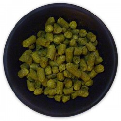 German Hallertau Gold Hop Pellets