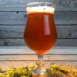 High Noon Session IPA - Extract Beer Recipe Kit
