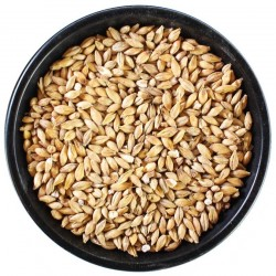 Ireks Sour Malt (Acidulated)