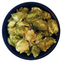 US Cascade Leaf Hops
