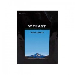 Wyeast 5733 Pediococcus