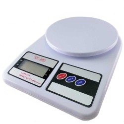 Economy Digital Scale