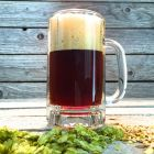 Baytown Brown - Extract Beer Recipe Kit