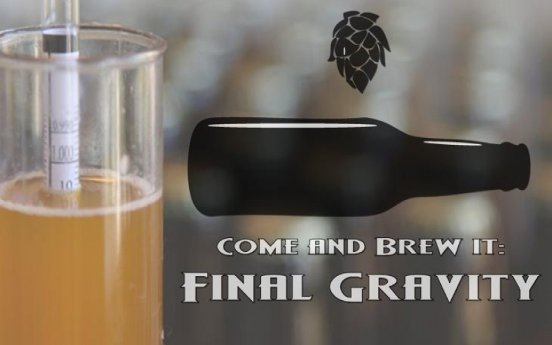 Final Gravity: Episode 1 - Belgian Golden Strong and Chocolate Hazelnut Porter
