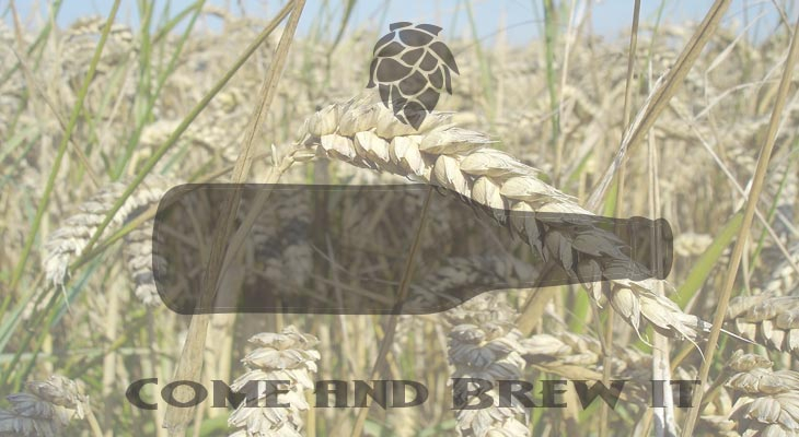 Come and Brew It Radio: Episode 110 - Malt-o-Rama 2 Wheat Malt and Making Plans for Nigel Continued