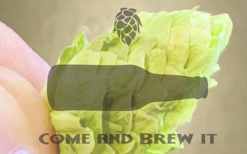 Come and Brew It Radio: Episode 126 -- Of German Hop Harvests and Beers from Afar