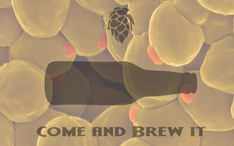 Come and Brew It Radio: Episode 96 - Yeast Washing for Reuse and the Belgian Golden Strong